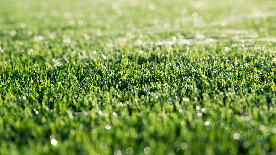 Work hard, play hard with artificial grass